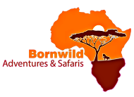 BORNWILD ADVENTURES